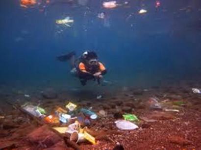 Saatnya Membatasai Sampah Plastik untuk Masa Depan Lautan