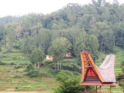 Tana Toraja, Destinasi Tepat untuk Para Pecinta Alam dan Budaya