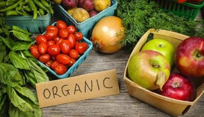 Benarkah Pangan Organik Lebih Menyehatkan Dibandingkan Non-Organik?