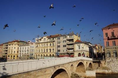 Wina dan Istanbul Bertemu di Sarajevo