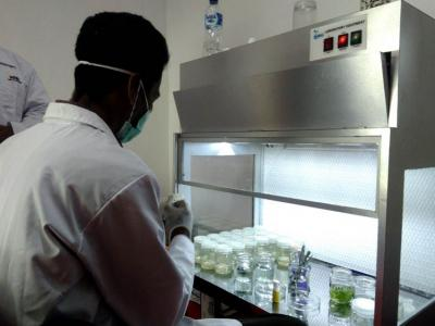 Abdul Nasir, Pengolah Limbah Jadi Berkah dari Probolinggo