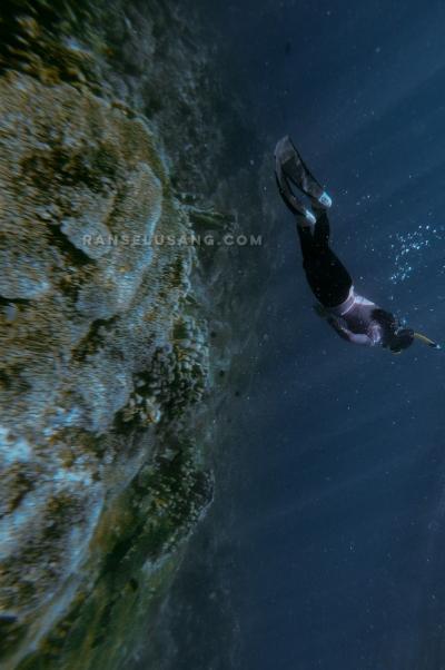 Menikmati Keindahan Taman Bawah Laut Olele, Gorontalo