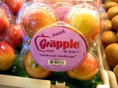 Rekayasa Genetik Buah Anggur dan Apel (Grapple)