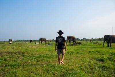 Bermain Bersama Gajah Sumatera di Taman Nasional Way Kambas