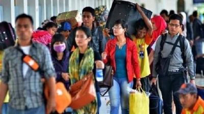 Cerita Bagaimana Seekor Tongkol Membawaku Pulang dari Madura