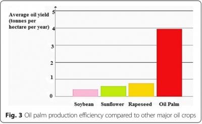 Tantangan dan Masa Depan CPO (Minyak Sawit), Biodiesel, dan Energi Murah