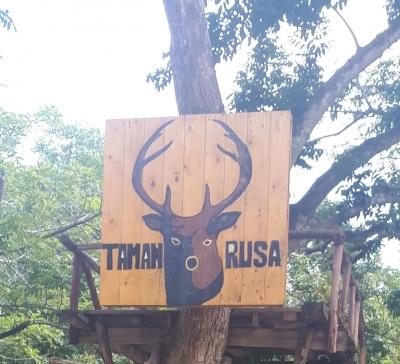 Wisata Taman Rusa dan Kelinci di Kota Batam