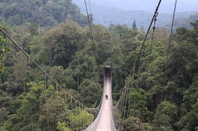 """Jembatan Gantung Situ Gunung yang """"Instagramable"""""""