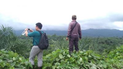 Hasil Riset IUCN, Ternyata Kelapa Sawit 9 Kali Lebih Efisien dalam Penggunaan Lahan