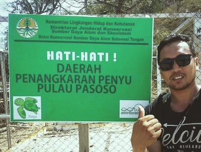 Pulau Pasoso,  Rumah Penyu Hijau Dilindungi