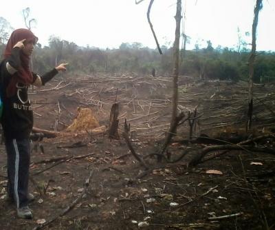 Jaga Hutan untuk Keberlangsungan Bumi