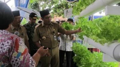 Luar Biasa! Ada Puluhan Sekolah Berwawasan Lingkungan di Yogyakarta!