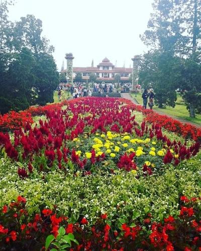 Taman Bunga dan Aku