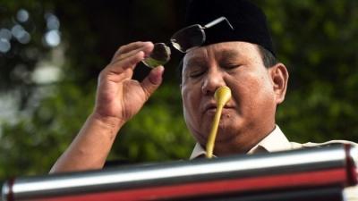 Prabowo Subianto, Presiden Tanpa Mahkota?