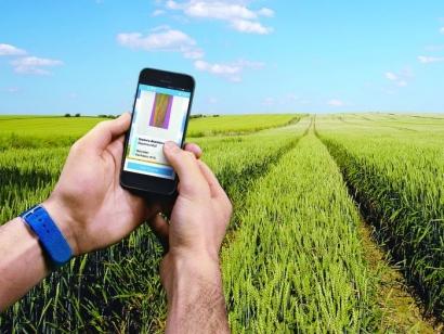 Menjadikan Petani sebagai Cita-cita Generasi Muda Melalui Pertanian Digital