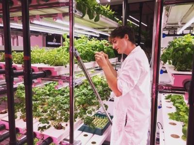 Inspirasi dari Italia dan Indonesia agar Milenial Kita Mau Bertani