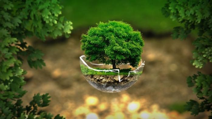 Puasa dan Moralitas Lingkungan