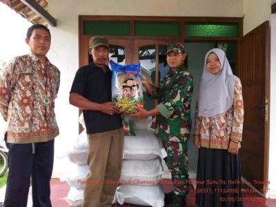 Bersama BPP Koramil 0815/17 Trawas Distribusikan Benih Padi Ciherang