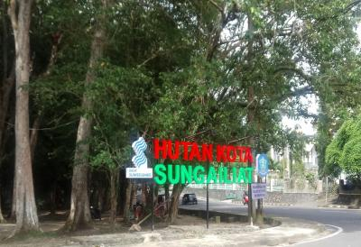 Sejuknya Hutan Kota serta Menunggu Berbuka di Taman Kota Sungailiat