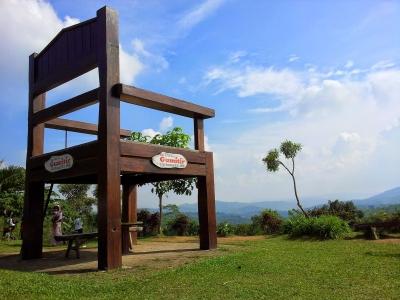 Mudik Lewat Jalur Selatan, Singgahlah di Eco Tourism Pabrik Kopi Gunung Gumitir