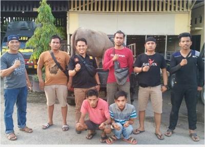 Tim Sultan Polres Tebo Bekuk Pelaku Pencurian Ternak Kerbau