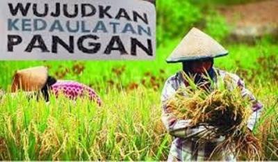 Strategi Petani Indonesia Maju, Jangan Ragu Belajar Pada Keberhasilan Pertanian Thailand