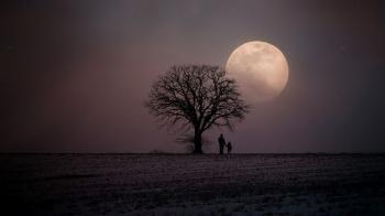 Bulan Jatuh di Pangkuan (2)