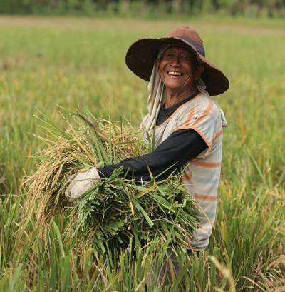 Revolusi Pertanian 4.0, Inovasi Petani Indonesia dan Algoritma Pasar