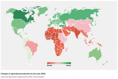 Solusi Regenerasi Petani: Memaksimalkan Peran Pendidikan dan Teknologi