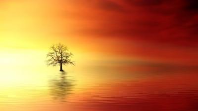 Sekiranya Langit Memutuskan Jatuh Cinta atau Patah Hati