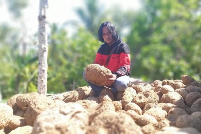Latah Bertani
