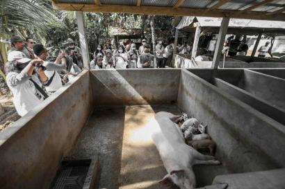 Liburan ke Kandang Babi di Desa Bongkasa Pertiwi, Bali