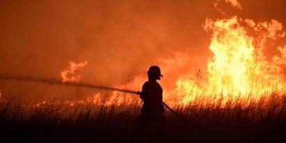 Kepentingan Korporasi di Balik Kebakaran Hutan dan Lahan