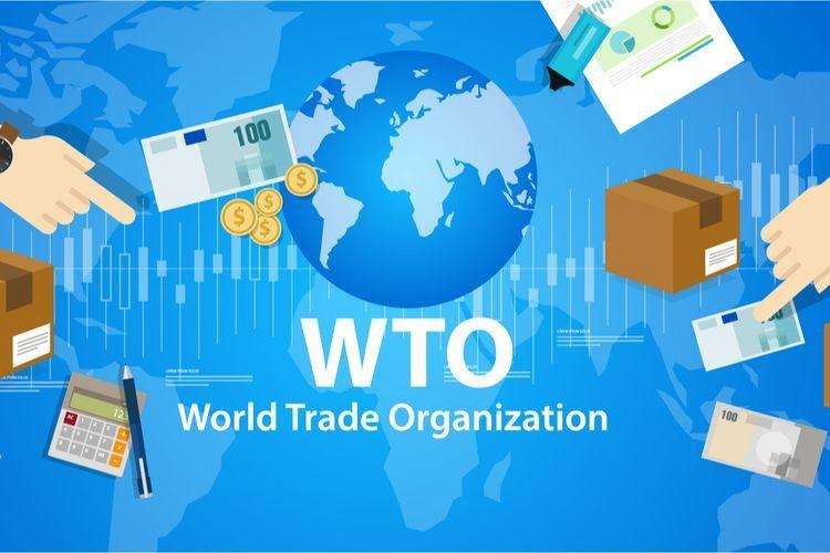 Indonesia Menjadi Negara Maju, Ini Daftar Negara Berkembang Versi Terbaru WTO