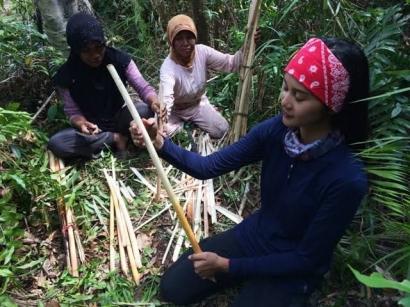 Mengenal Tanaman Ilatung Khas Kalimantan, Batang dan Humbutnya Serbaguna