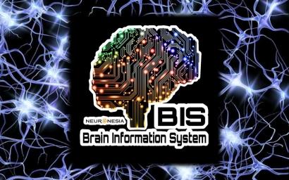 Sistem Informasi Otak Manusia
