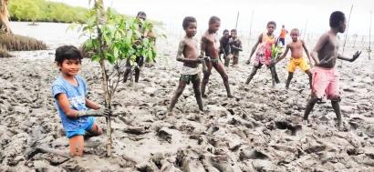 Mangrove dan Masyarakat Pesisir Asmat