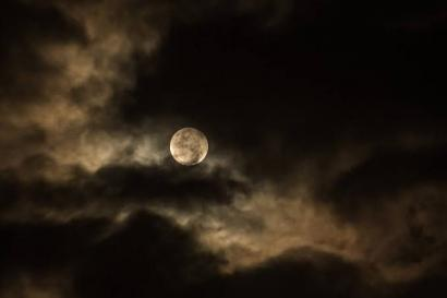 Puisi: Malam