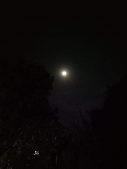 Pada Sebuah Malam Tanpa Bintang
