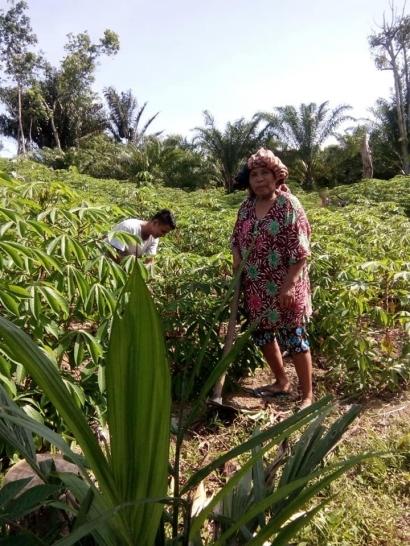 Ladang dan Sawah, Dua Tempat Keseharian Nenek