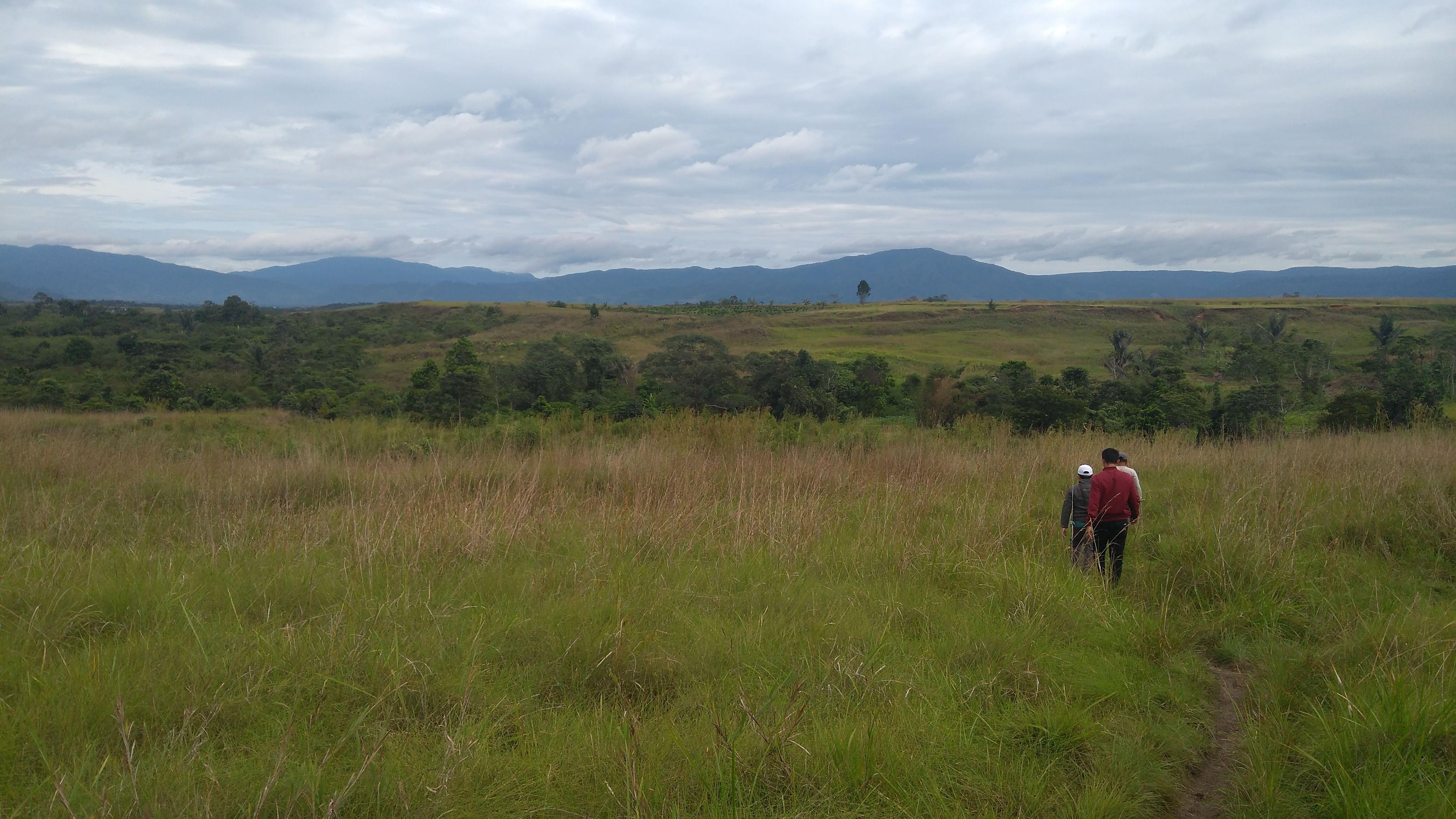 Cerita Mengunjungi Lembah Napu nan Subur (Bagian 2)