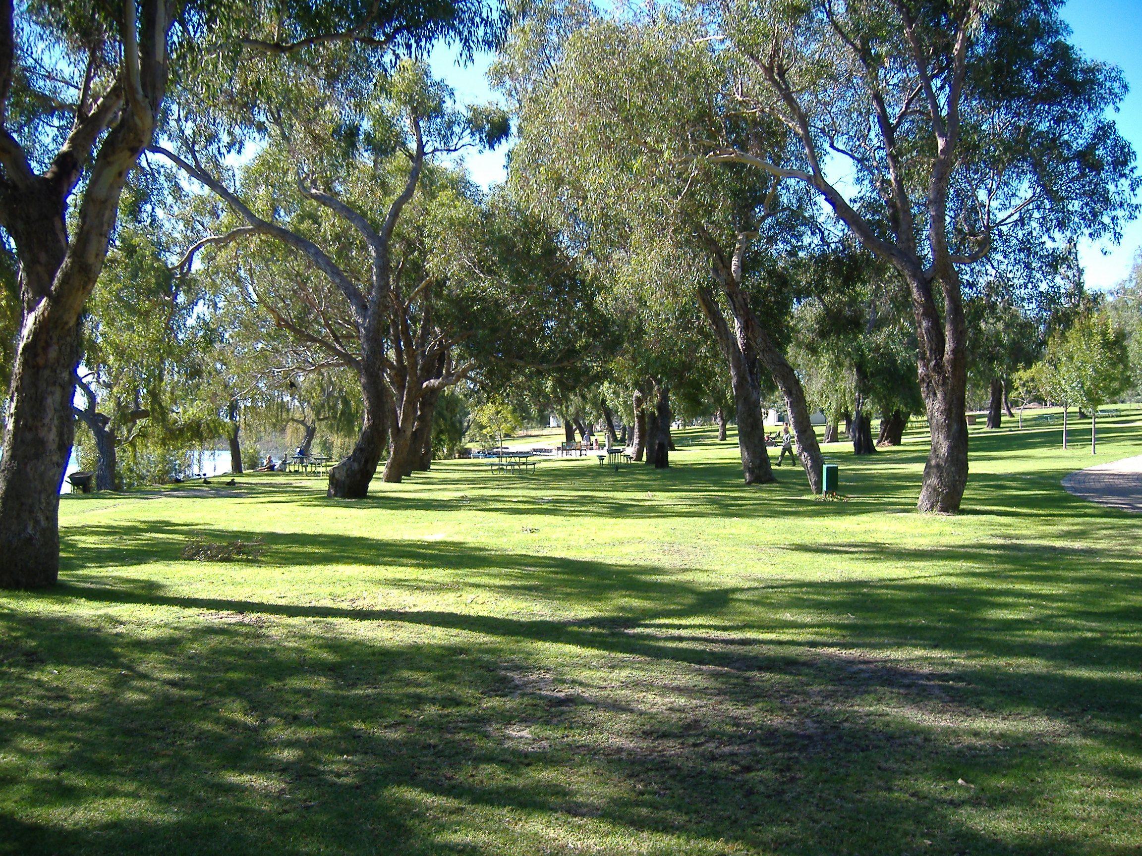 """""""Taman Nasional Yanchep"""", Piknik Pertama di Perth Musim Semi 1993"""