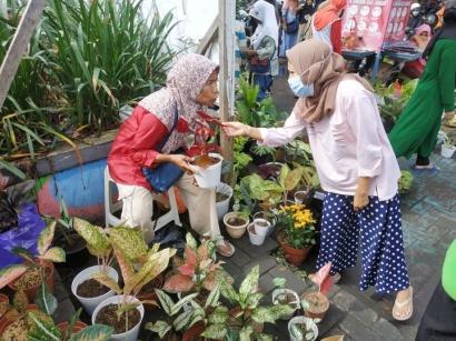 Demam Bunga, Hobi Baru Ibu Rumah Tangga di Ternate