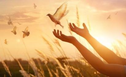 Forgiveness Therapy Membuat Hidup Lebih Tenang