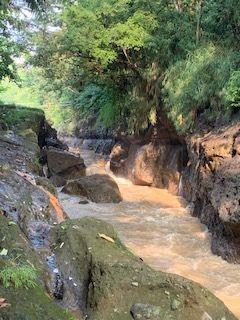 Blusukan ke Leuwi Atoh dan Leuwi Adam: Bantaran Kali Ciliwung Bogor