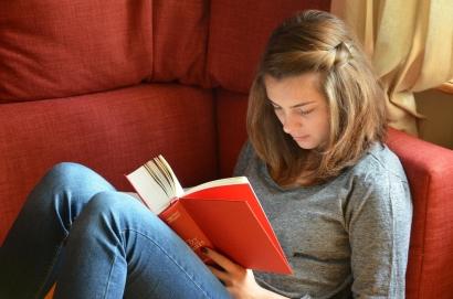 Wahai Penulis, Pembaca Sebaiknya Diperlakukan sebagai Apa?