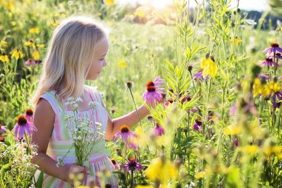 Percakapan dengan Alam dalam Karya Puisi