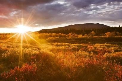 Tuhan Berikan Aku Kesempatan Menikmati Matahari Pagi
