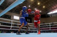 Gambar Artikel Papua Tampil Sebagai Juara Umum Cabang Olahraga Tinju PON Papua 2021
