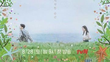 Review Hometown Cha Cha Cha (2021): Cerita dan Karakter yang Penuh Warna